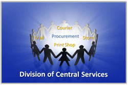 Division of Central Services image