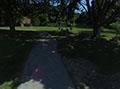 Path at Quiet Cove
