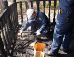 Fire Investigators gathering evidence