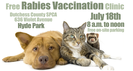 Free Rabies Vaccination Clinic July 18 (8am-noon), Dutchess County SPCA, 636 Violet Ave., Hyde Park
